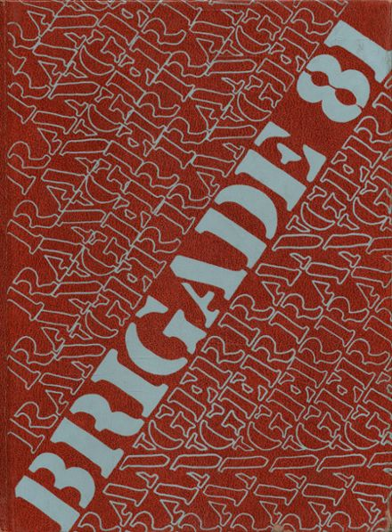 1981 Terry High School Yearbook Cover