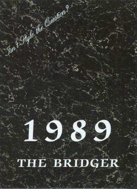 1989 Ambridge Area High School Yearbook Cover