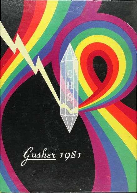 1981 Columbia High School Yearbook Cover