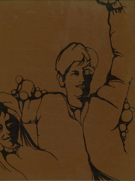 1970 Horace Greeley High School Yearbook Cover