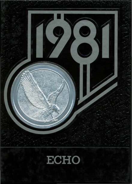 1981 Hillsdale High School Yearbook Cover