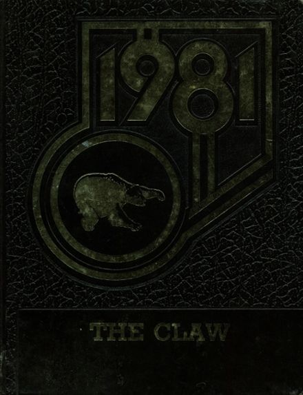 1981 Mayo High School Yearbook Cover