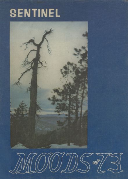 1973 Saguaro High School Yearbook Cover