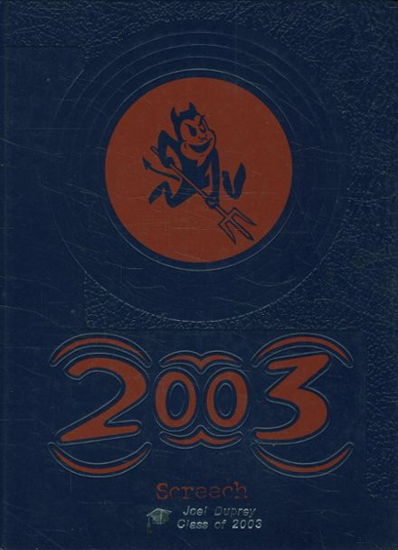 1995 St. Michael's High School Yearbook Cover