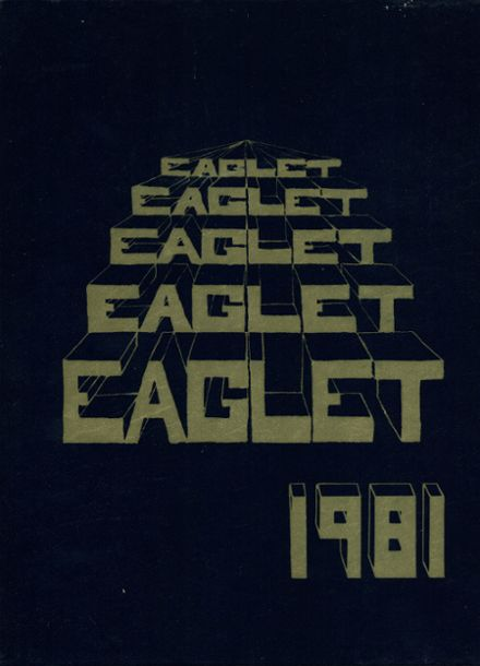 1981 Somerset Area High School Yearbook Cover