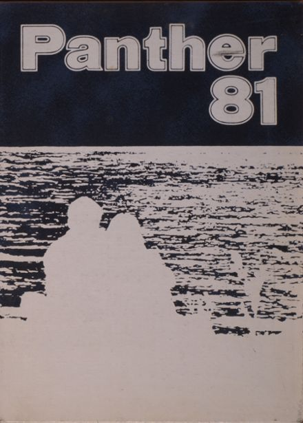 1981 O'Fallon Township High School Yearbook Cover