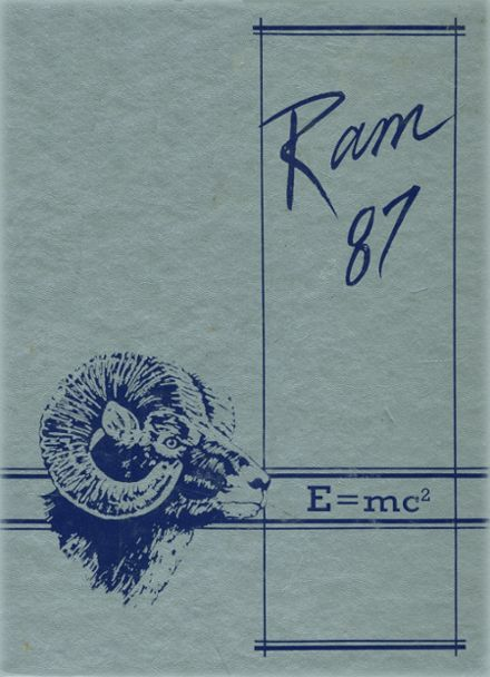 1987 Newton County High School Yearbook Cover
