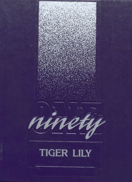 1991 Port Allegany High School Yearbook Cover