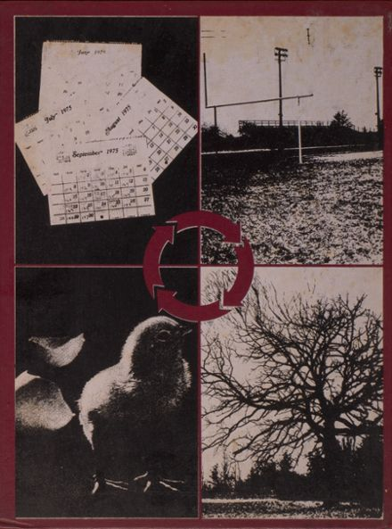 1975 Lowell High School Yearbook Cover