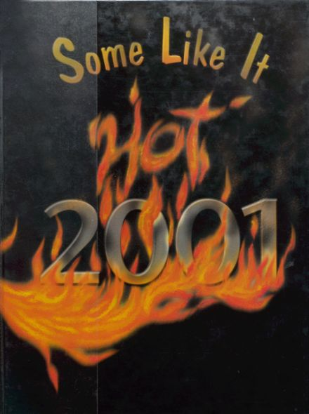 2001 Doniphan High School Yearbook Cover