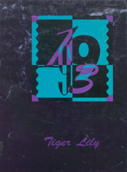 1993 Port Allegany High School Yearbook Cover