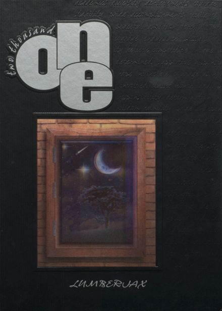 2001 Wright City High School Yearbook Cover