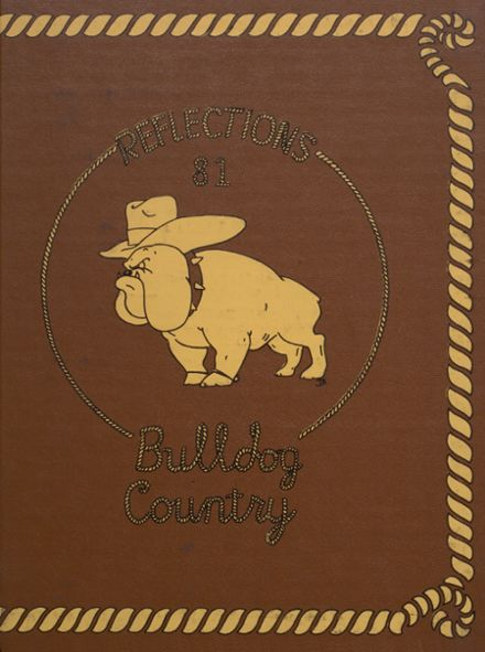 1981 Mediapolis High School Yearbook Cover