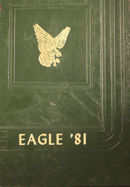 1981 Canton High School Yearbook Cover