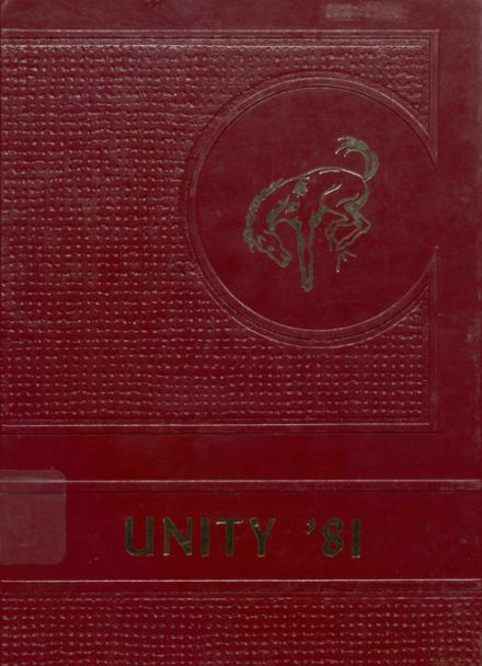 1981 Unity High School Yearbook Cover