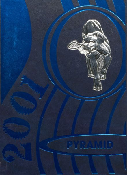2001 Pinckneyville High School Yearbook Cover