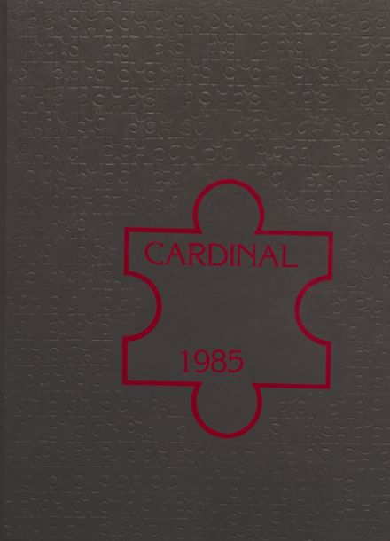 1985 Taylor County High School Yearbook Cover