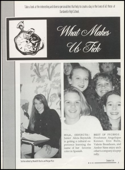 1996 Dardanelle High School Yearbook Page 9