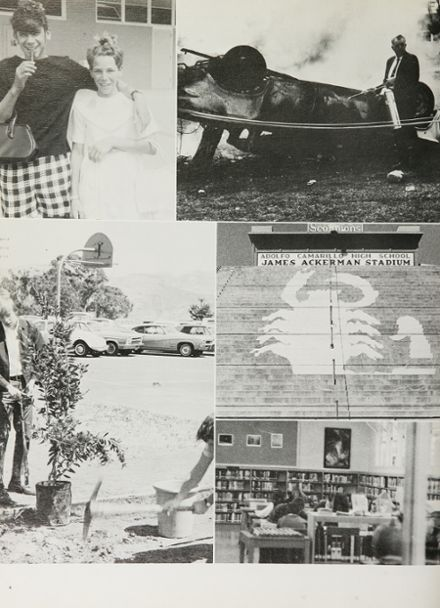 1970 Adolfo Camarillo High School Yearbook Page 8
