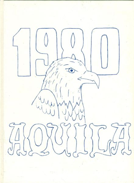 1980 Downsville Central High School Yearbook Cover