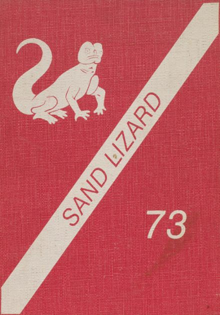 1973 Dardanelle High School Yearbook Cover