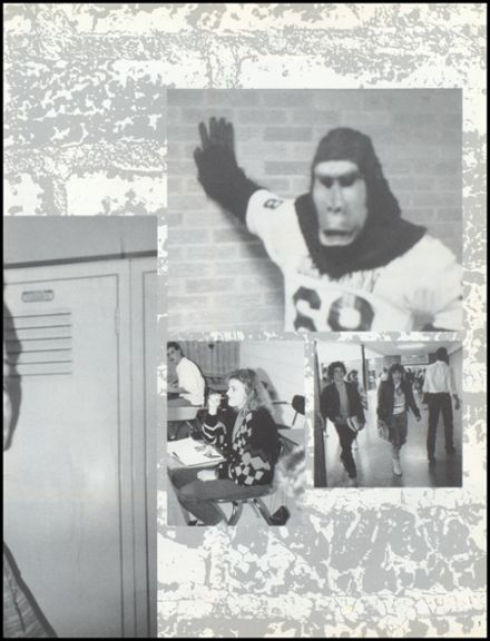 1988 John Glenn High School Yearbook Page 9