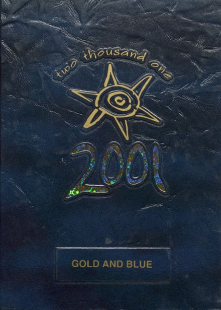 2001 Mitchell High School Yearbook Cover