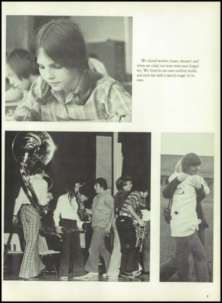 1974 Fleetwood Area High School Yearbook Page 7