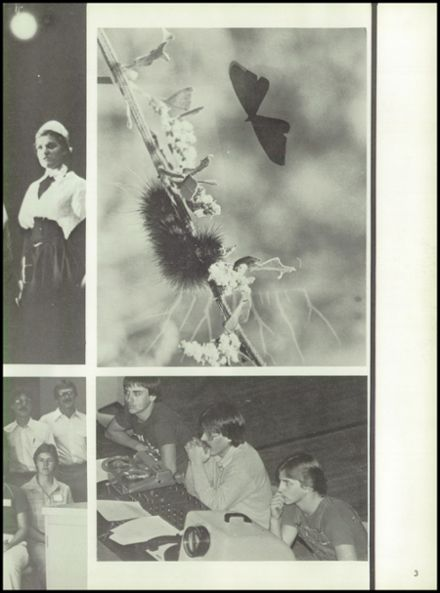 1980 C1 High School Yearbook Page 7
