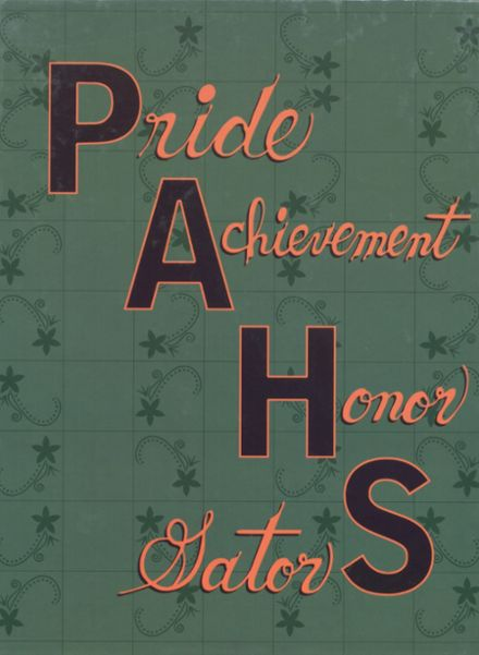 2009 Port Allegany High School Yearbook Cover