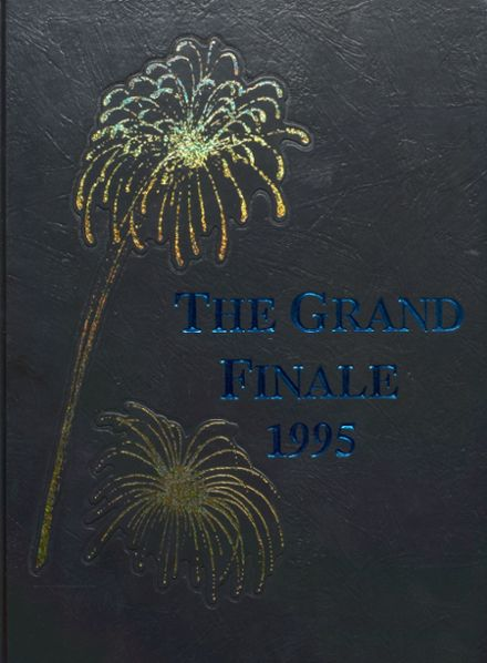 1995 Rogers High School Yearbook Cover
