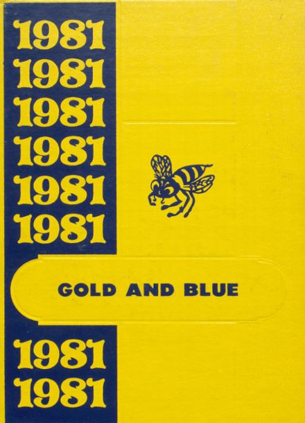 1981 Mitchell High School Yearbook Cover