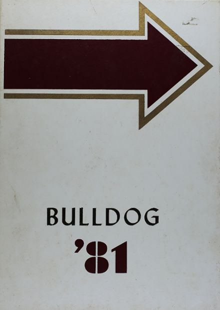 1981 Avery High School Yearbook Cover