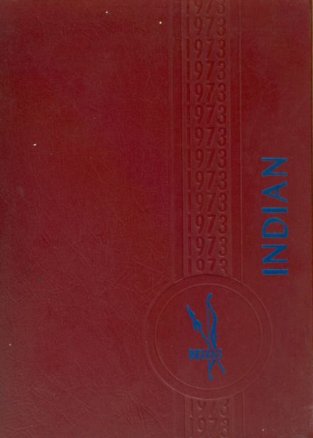 1973 Towns County High School Yearbook Cover