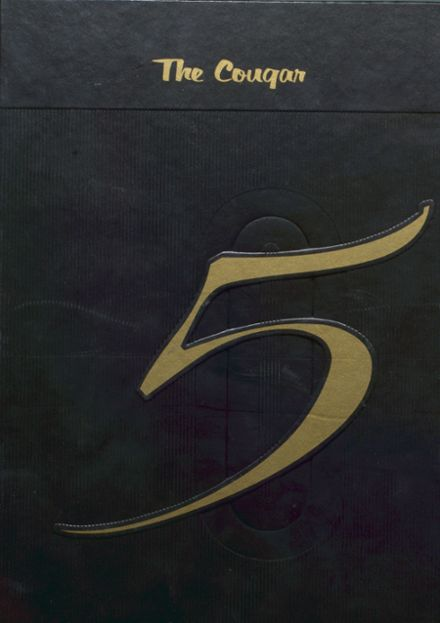 2005 Illini Central High School Yearbook Cover