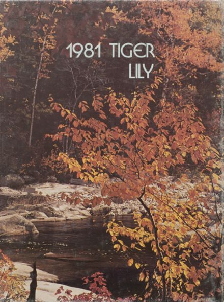 1981 Port Allegany High School Yearbook Cover