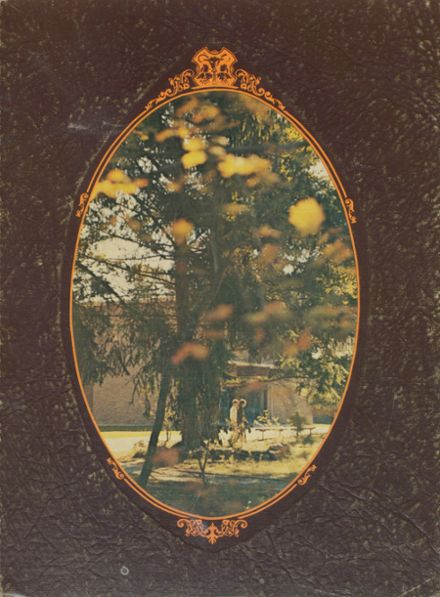 1972 Rogers High School Yearbook Cover