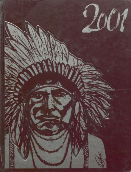 2001 Stillwater High School Yearbook Page 1