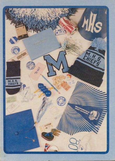 1980 Meadowdale High School Yearbook Cover