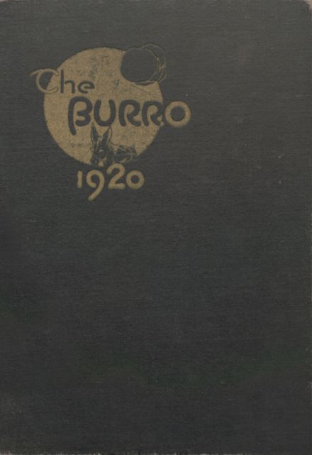 1920 Mineral Wells High School Yearbook Cover