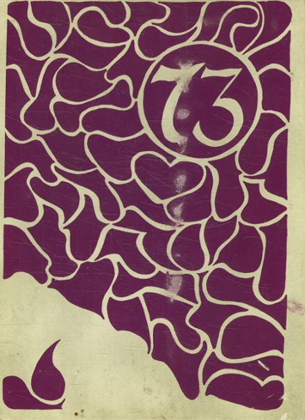 1973 Carl Hayden High School Yearbook Cover