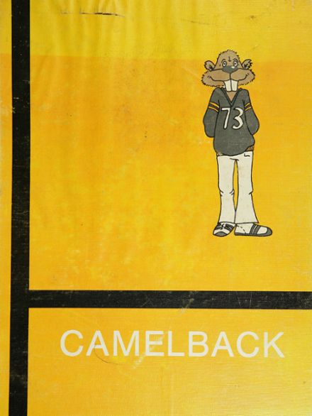 1973 Scottsdale High School Yearbook Cover