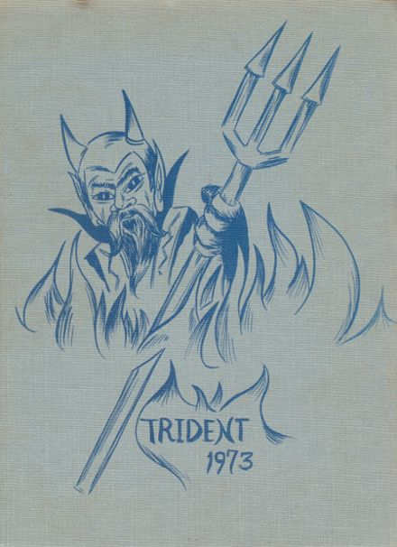 1973 Springbrook High School Yearbook Cover