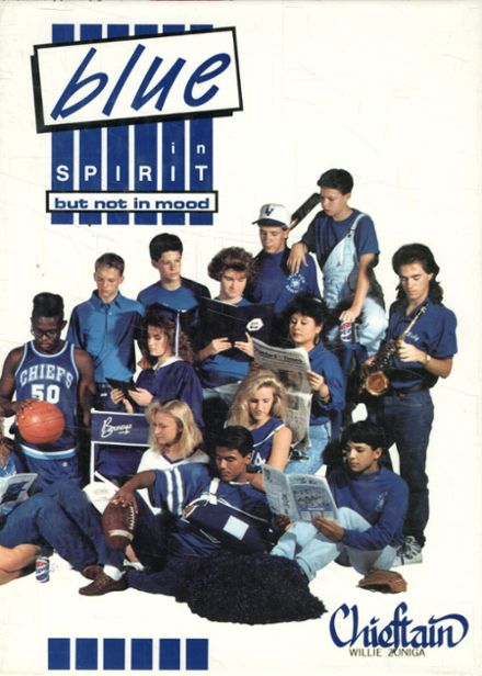 1991 Lake View High School Yearbook Cover