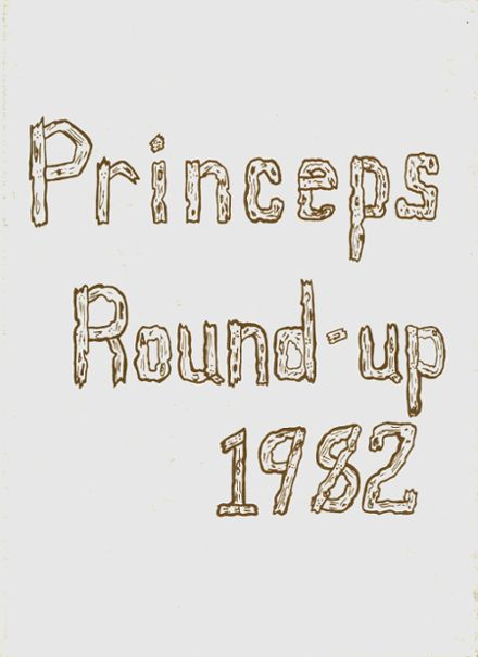 1982 Princeton High School Yearbook Cover