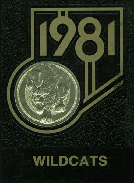 1981 Morrison High School Yearbook Cover