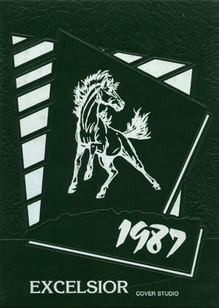 1987 Portage Area High School Yearbook Cover