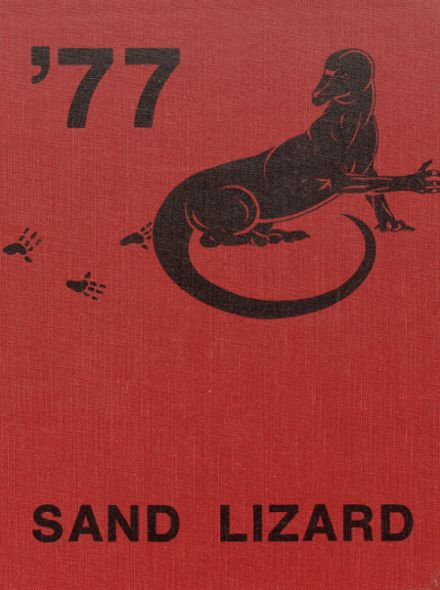 1977 Dardanelle High School Yearbook Cover