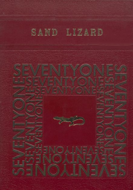 1971 Dardanelle High School Yearbook Cover