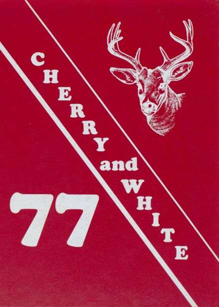 1977 Bucktail Area High School Yearbook Cover